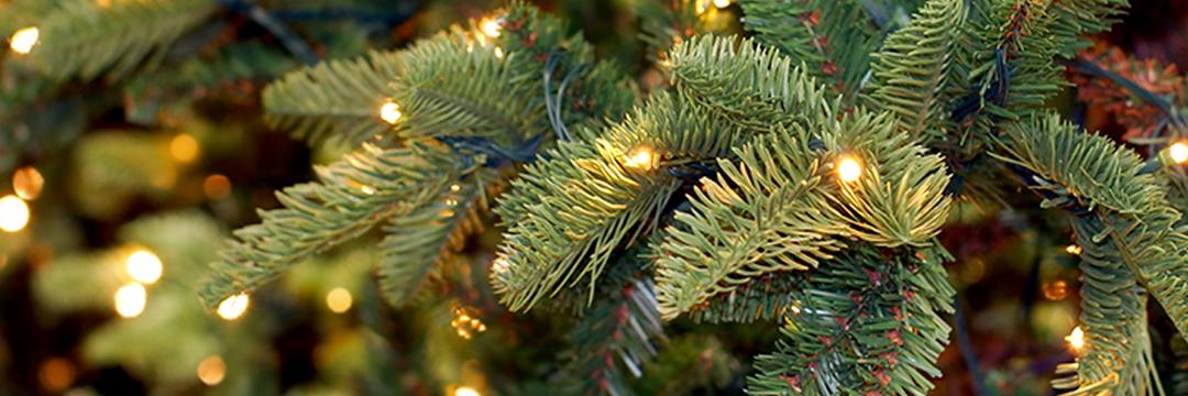 Veilig En Sfeervol Kerst Op De Werkvloer